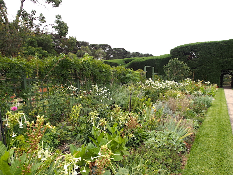 Coombe estate, historic home and garden of Dame Nellie Melba