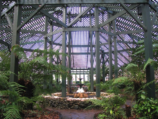 Interior of the fernery in Cook Park, Orange. Photo Margaret Fallon