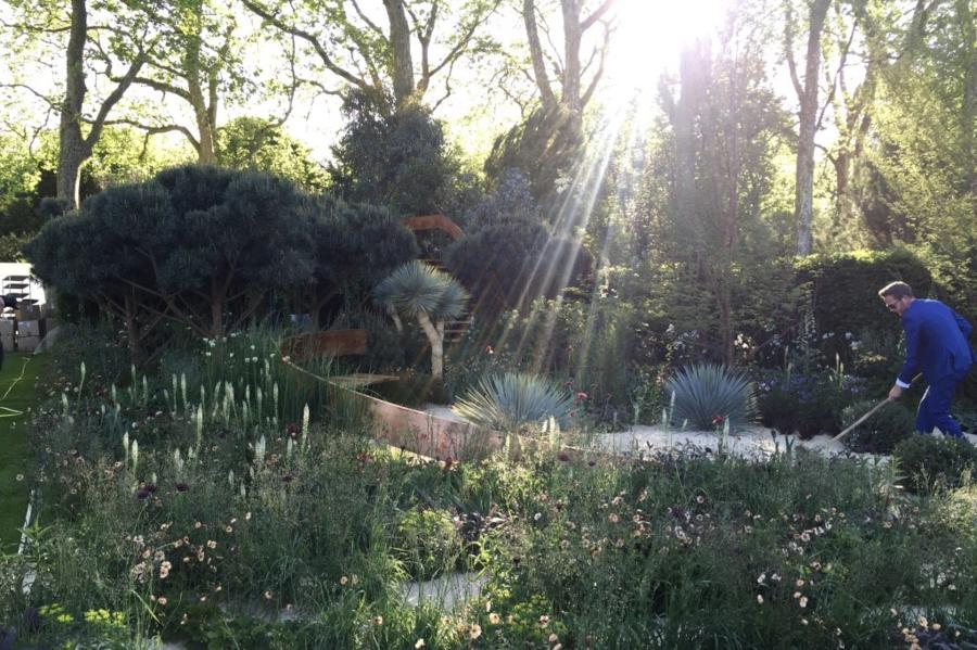 Nick Bailey doing early morning preparations in the Winton Beauty of Mathematics Garden. Design Nick Bailey
