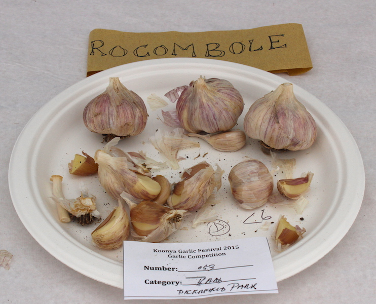 Rocombole Garlic. Photo Carey Badcoe