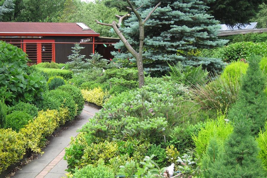 Japanese-style garden in Sloterdijkermeer, Amsterdam