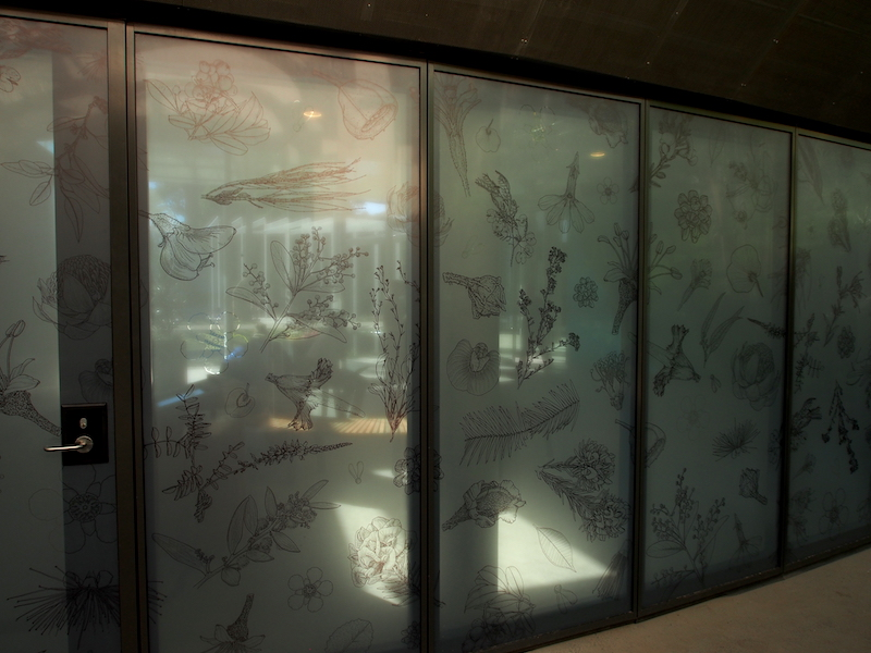 Engraved botanical illustrations on frosted-glass, moveable walls inside The Calyx, Sydney RBG