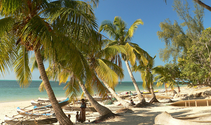 Madagascar beach with palm trees