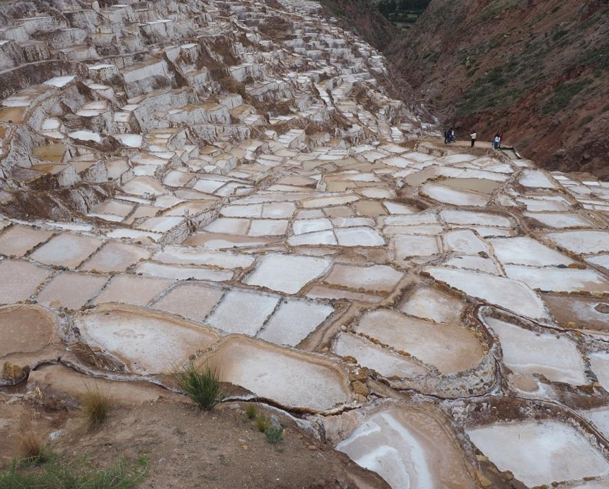 Sal Natural y Ecologica (salt pans) fed by natural streams. Nothing much grows in this hostile environment.