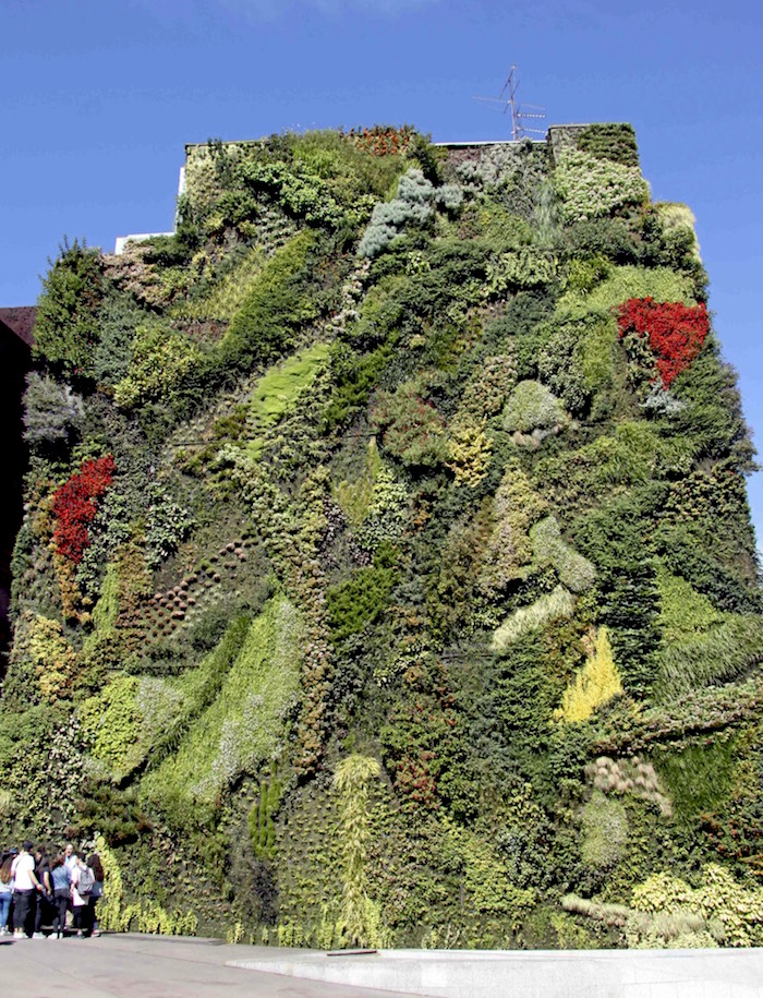 Caixa Forum Greenwall, Madrid