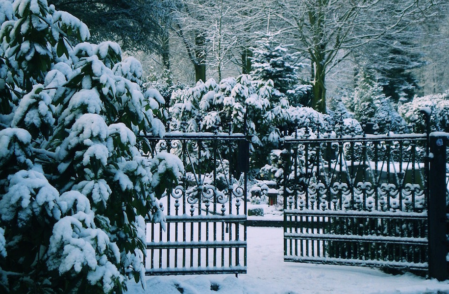 Snow-covered woodland cemetery in Germany